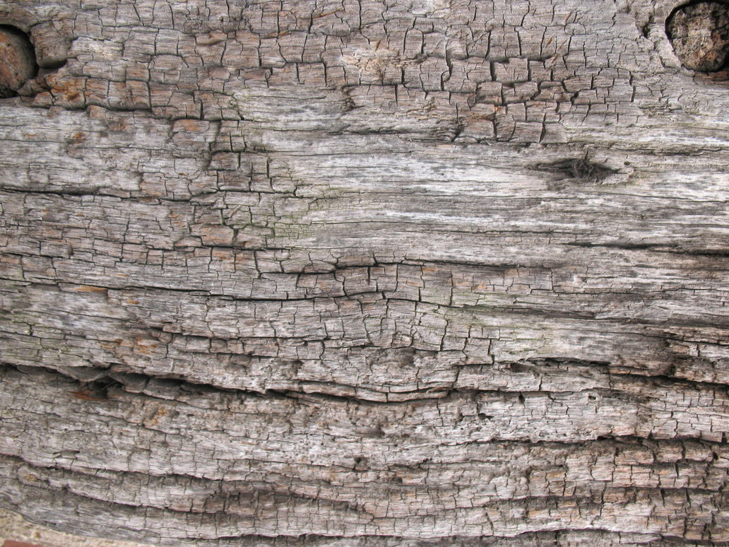 PSD Mockups crackled Wood Texture