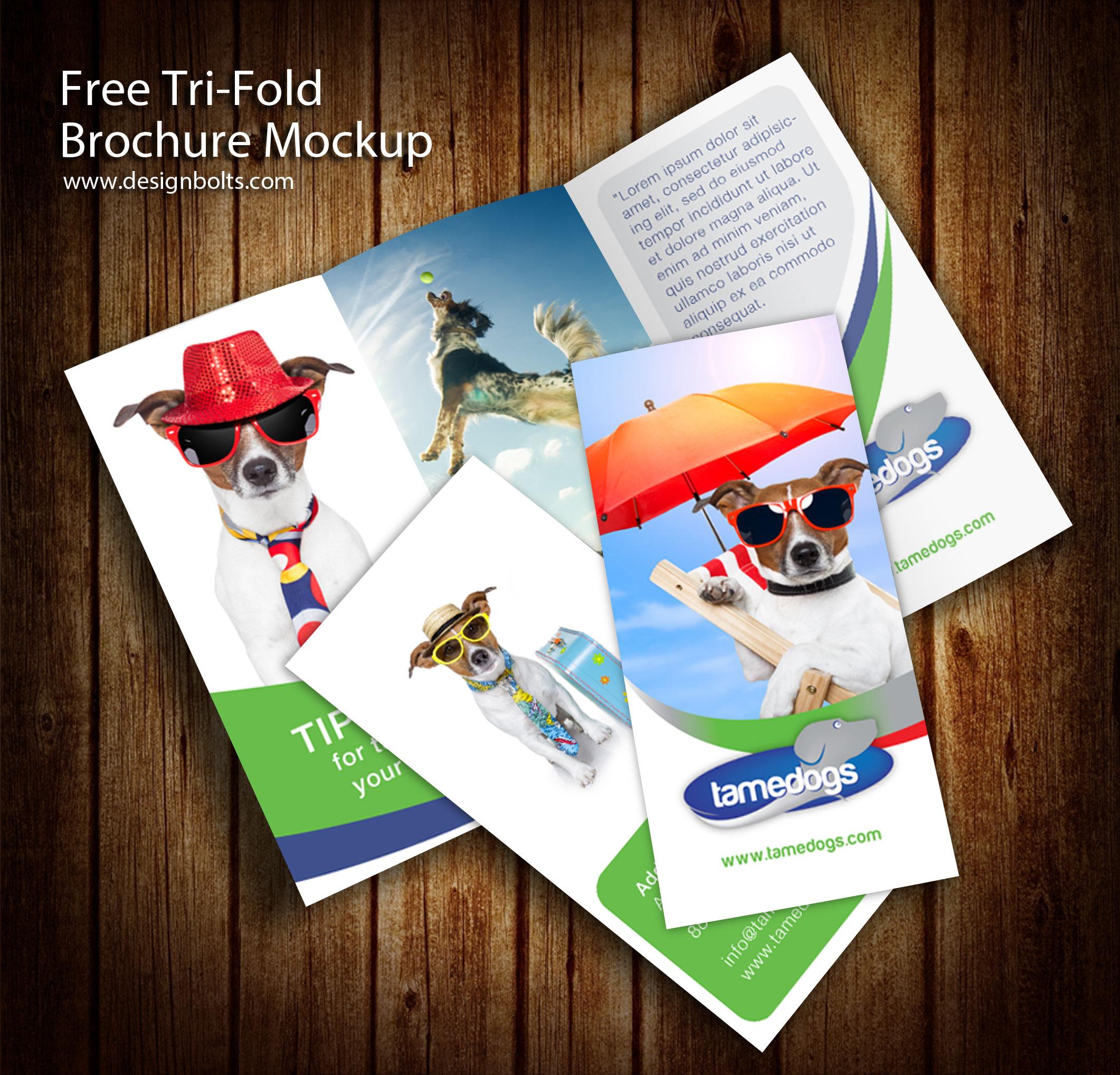 3 Panel Tri Fold Brochure PSD Mockups