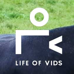 life-of-video