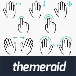 theme-raid-gestures