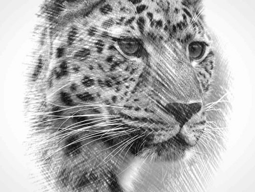 Photoshop in 60 Seconds: How to Create an Easy Sketch Effect