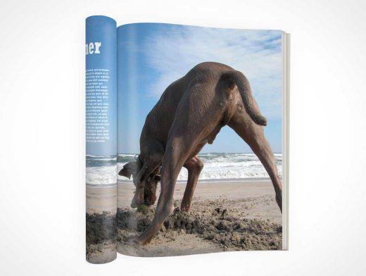 Rolled And Folded Magazine PSD Mockup