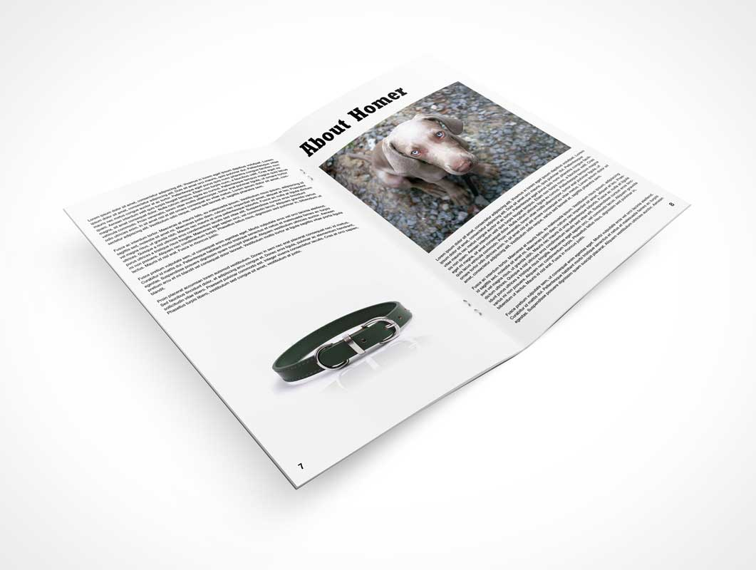 Pamphlet Left & Right Page Middle Shot PSD Mockup