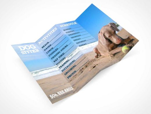 4 Panel Flyer Small Business Brochure PSD Mockup