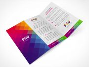 Tri Fold DL All Panels Visible PSD Mockup