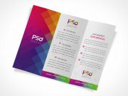 Tri Fold DL Brochure Inside Left, Centre & Right Panels PSD Mockup