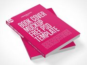 Dual Softcover Books Stacked PSD Mockup