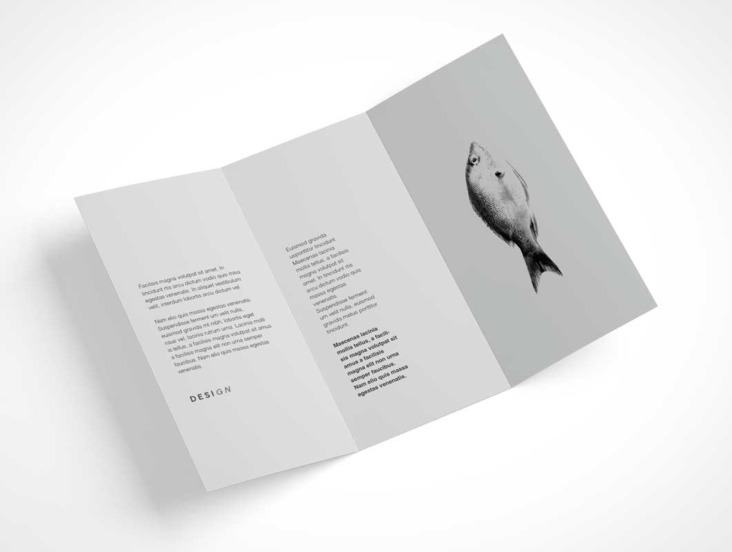 Tri-Fold Brochure Inside & Outside Panels 7 Angles PSD Mockup