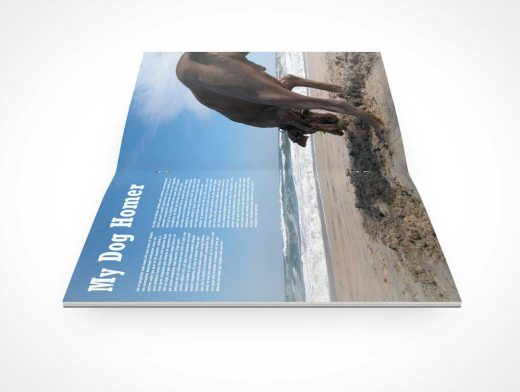 Pamphlet Sideview Stapled Inside Pages PSD Mockup