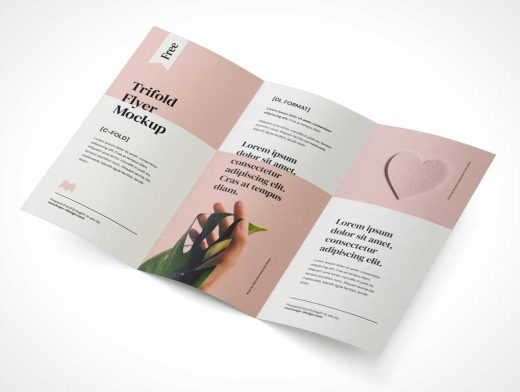 Unfolded 3 Panel Brochure PSD Mockup